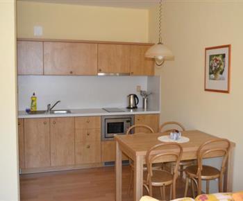 Apartmán A - kuchyňka s mikrovlnnou troubou, varnou konvicí a lednicí