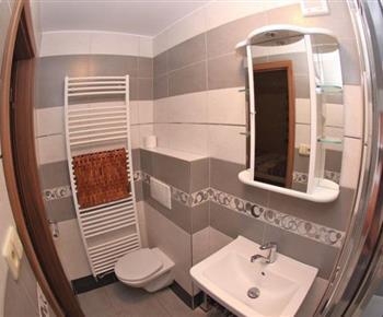 Apartmán - koupelna se sprchovým koutem a toaletou