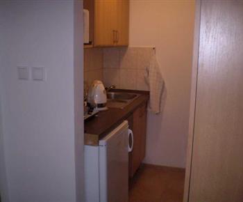 Kuchyňka s linkou, lednicí, dvouplotýnkovým vařičem, mikrovlnou troubou a varnou konvicí