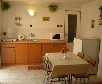 Kuchyně s lednicí, dvouplotýnkovým vařičem, mikrovlnnou troubou a varnou konvicí