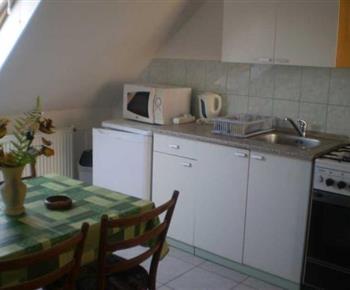 Kuchyně s linkou, sporákem, lednicí, mikrovlnnou troubou a varnou konvicí