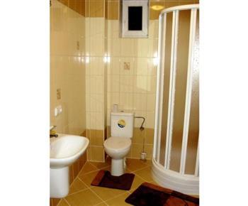 Pohled na sociální zařízení se sprchovým koutem, umyvadlem, zrcadlem a toaletou