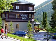 Hotel Alpský hotel