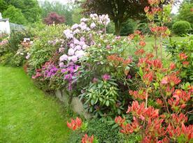 v květnu je naše zahrada velmi krásná