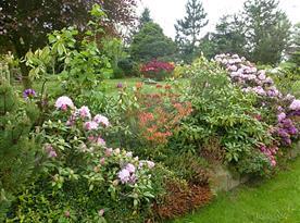 soukromí zajištují různé terasy a živé ploty, stále něco kvete