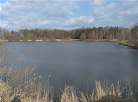 Rybník v Bělči nad Orlicí
