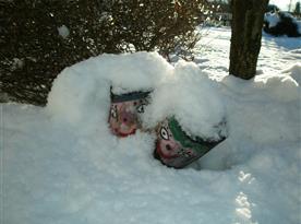 Venku - zimní dekorace