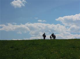 Vyjížďky na koni po okolí