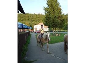 Projížďky na konících