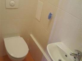 Samostatná toaleta s umyvadlem
