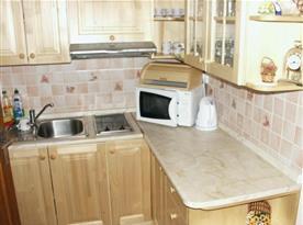 Kuchyně s linkou, dvouplotýnkovou varnou deskou, mikrovlnou troubou a rychlovarnou konvicí