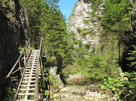 Juráňova Dolina (20 km)